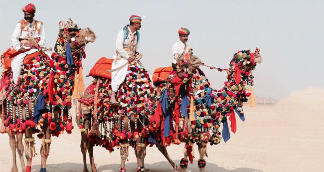 pushkar-camel-fair-2019