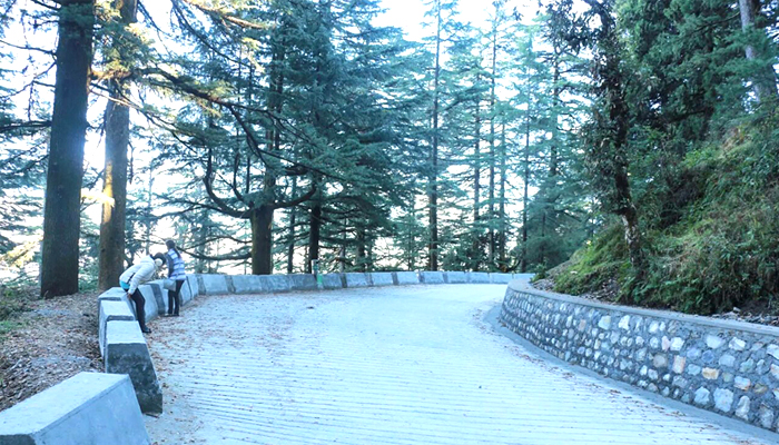 Camel's-Back-Road-Mussoorie