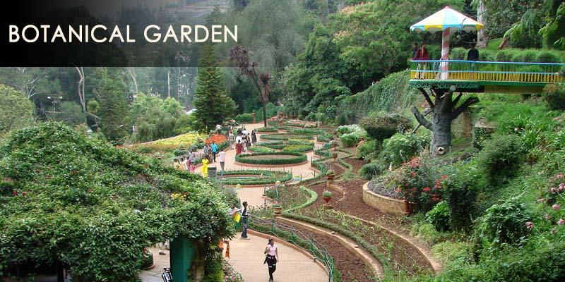 botanical gaden - ketti valley