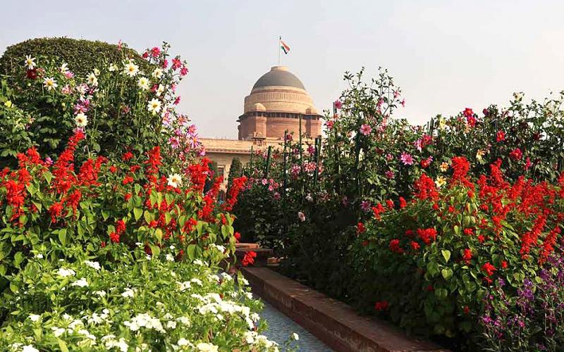 mughal garden in solan india
