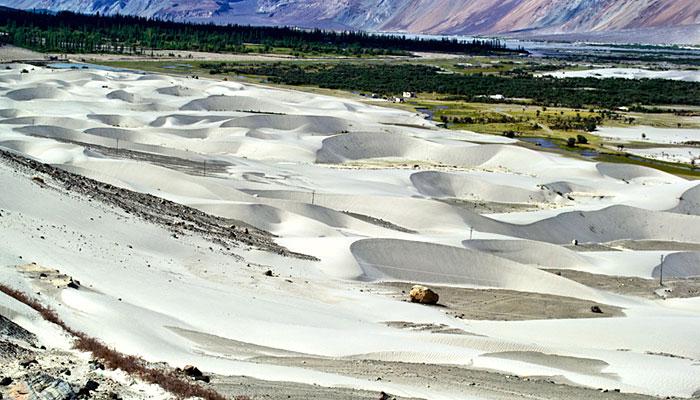 Nubra-Valley-Sand-Dunes