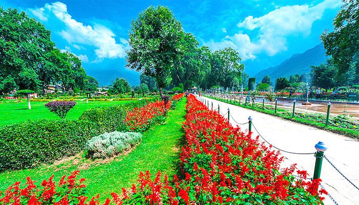 shalimar-bagh-garden-Srinagar