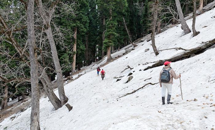 kolahoi-glacier-india