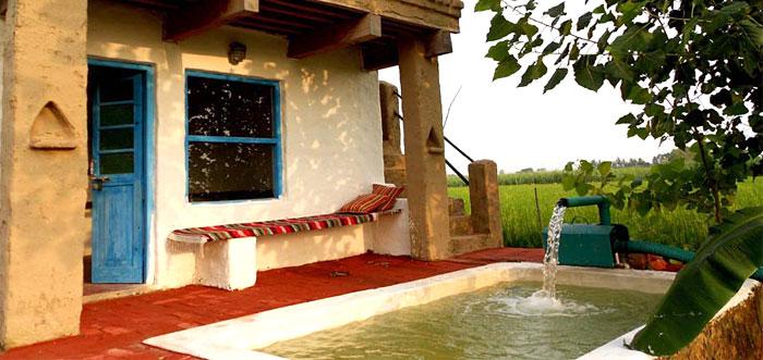 pool-outside-the-cottage-punjabiyat-amritsar