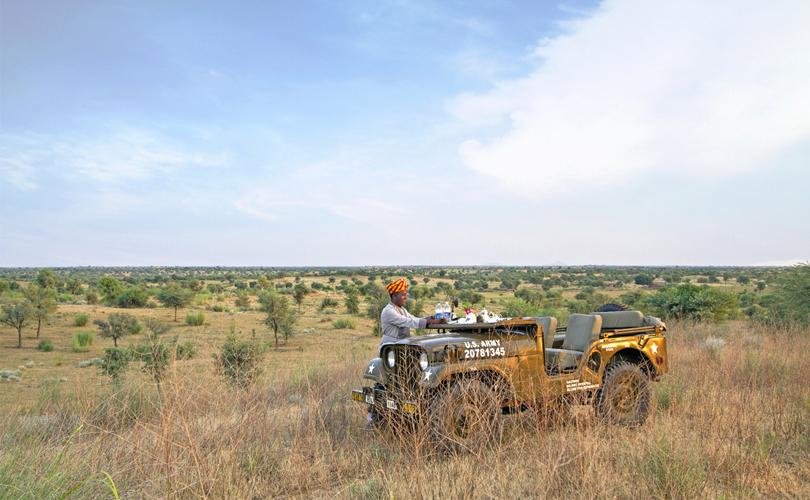 alsisar-mahal-safaris-rajasthan