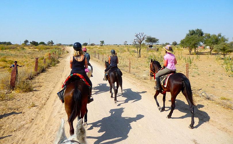 horse-riding-at-dasada