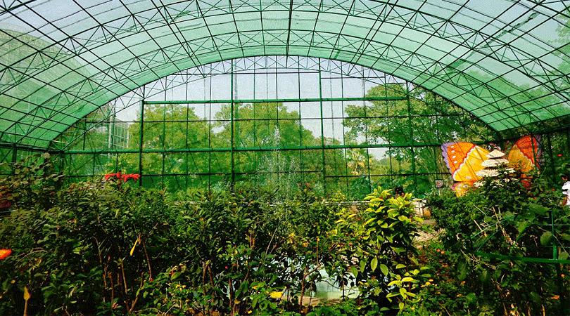 butterfly-park-at-ramoji-film-city