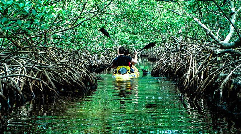 andaman-and-nicobar-baratang-island