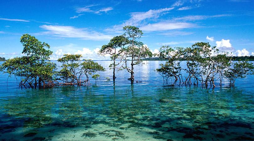 andaman-and-nicobar-island