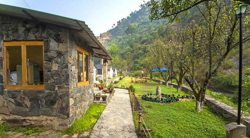 shoghi-camping-parwanoo-india