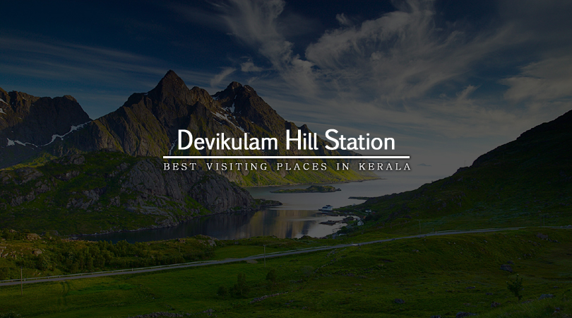devikulam-hill-station-kerala-india