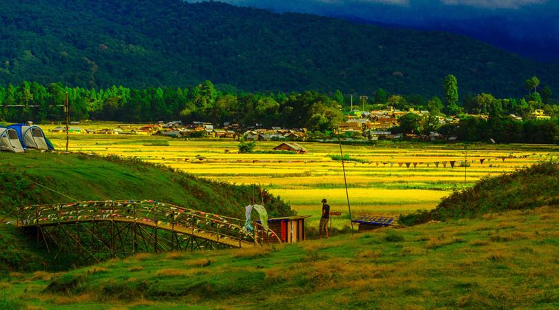 the-golden-valley-of-ziro-india