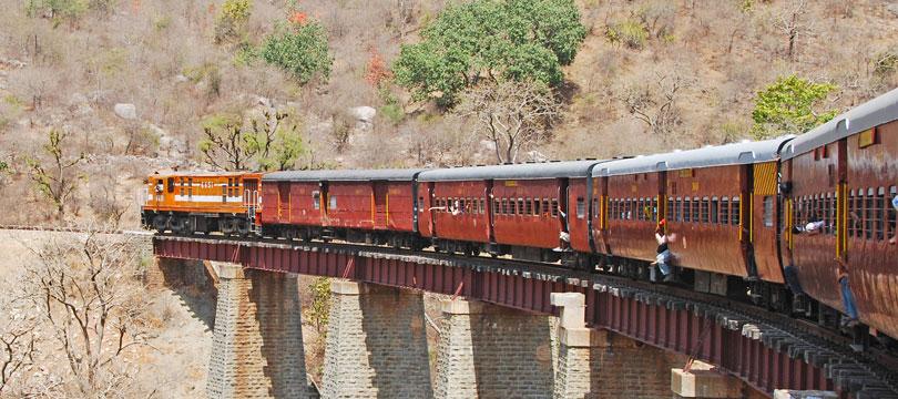 rawla-jojawar-train-safari