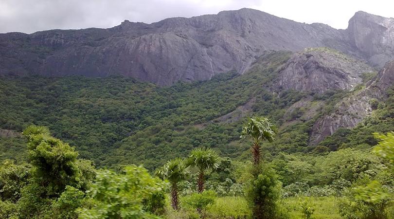 raja's-cliff-nelliyampathy