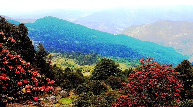 trekking-at-chopta-india