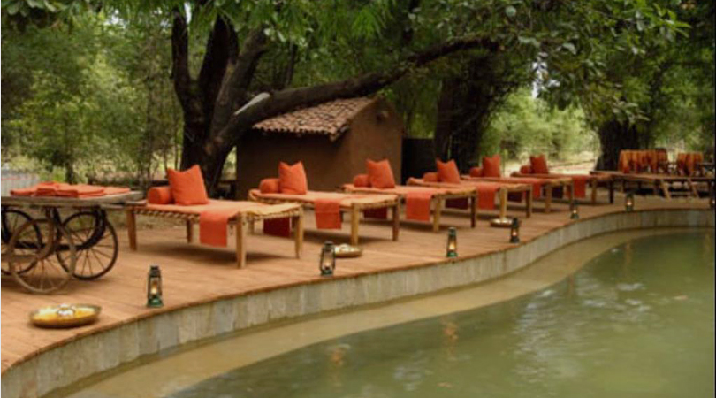 kings-lodge-in-bandhavgarh