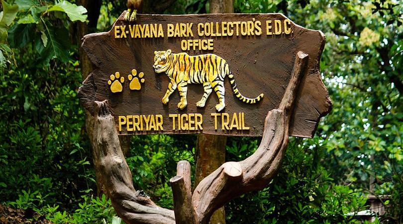 periyar-national-park-kumily-india