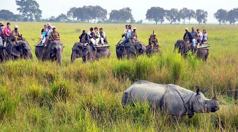 sitamata-wildlife-asylum-india
