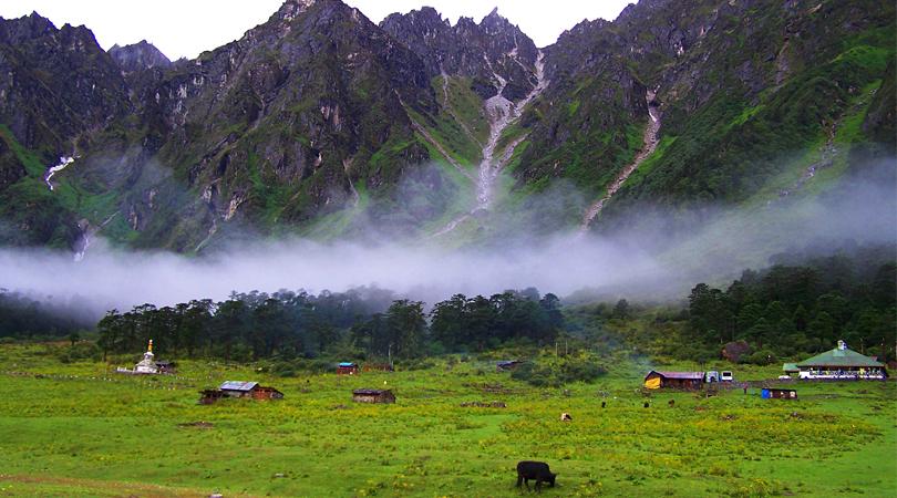 yumthang-valley-gangtok-india