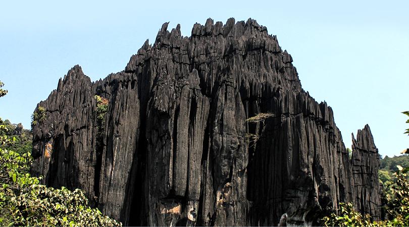yaana-karnataka