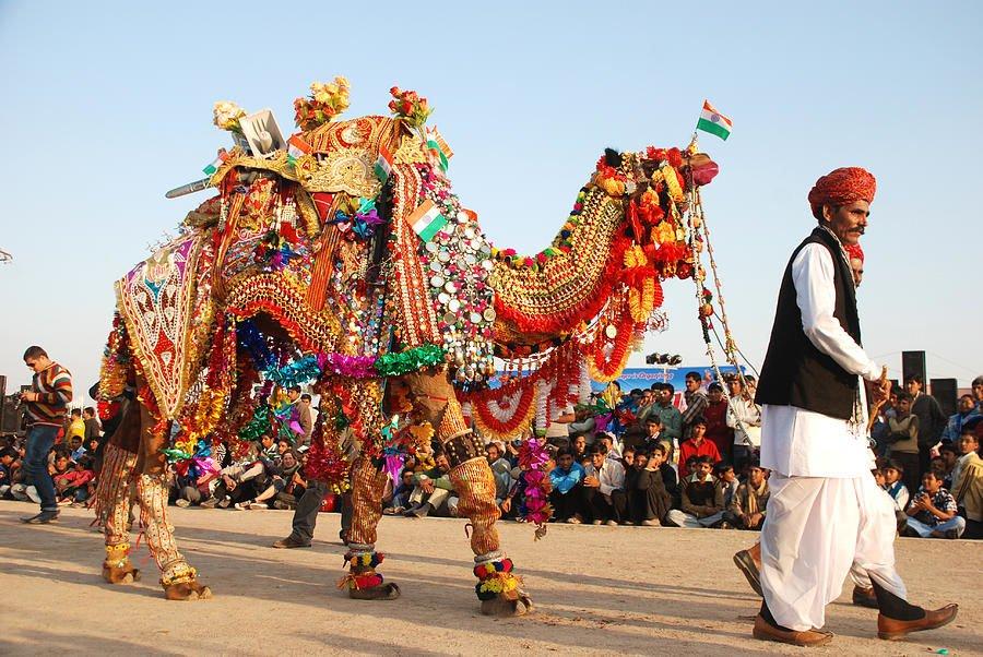 bikaner-festival-camel