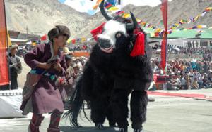 ladakh-festival-2019-1
