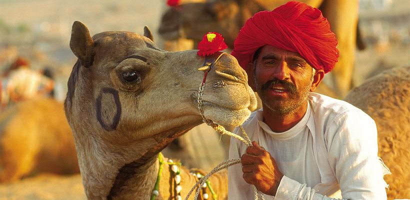 camel-festivals-in-india