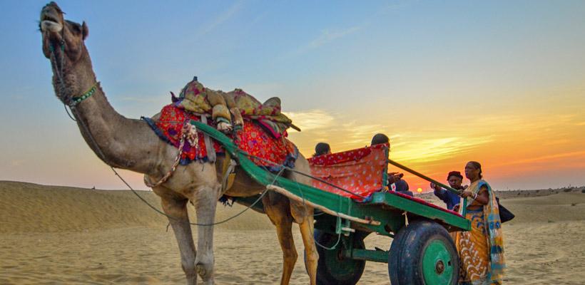nagaur-camel-festival-in-india