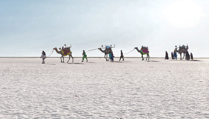 Rann of Kucth