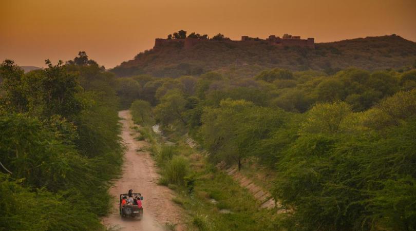 village safari -ramthara fort