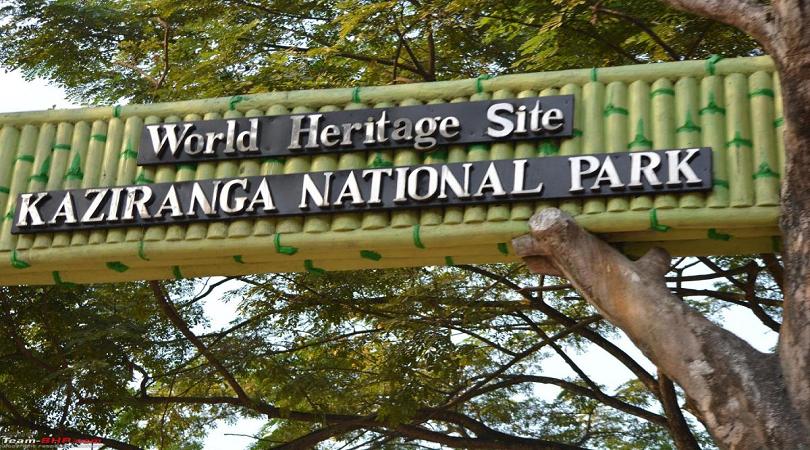 Kaziranga Resort-Kaziranga National Park, Assam